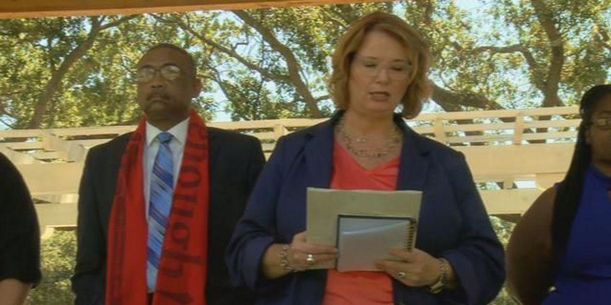 Organizations prepare for gun violence rally on Saturday