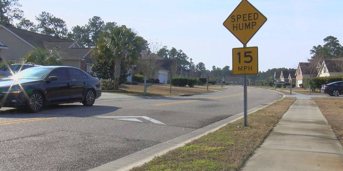 It's Your Money: Horry County budgets nearly $90,000 on speed humps