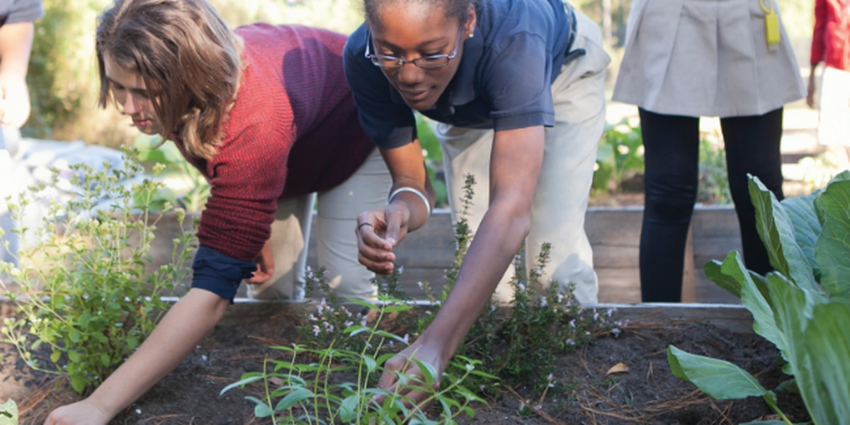 Local students get to play in the dirt while learning about healthy eating