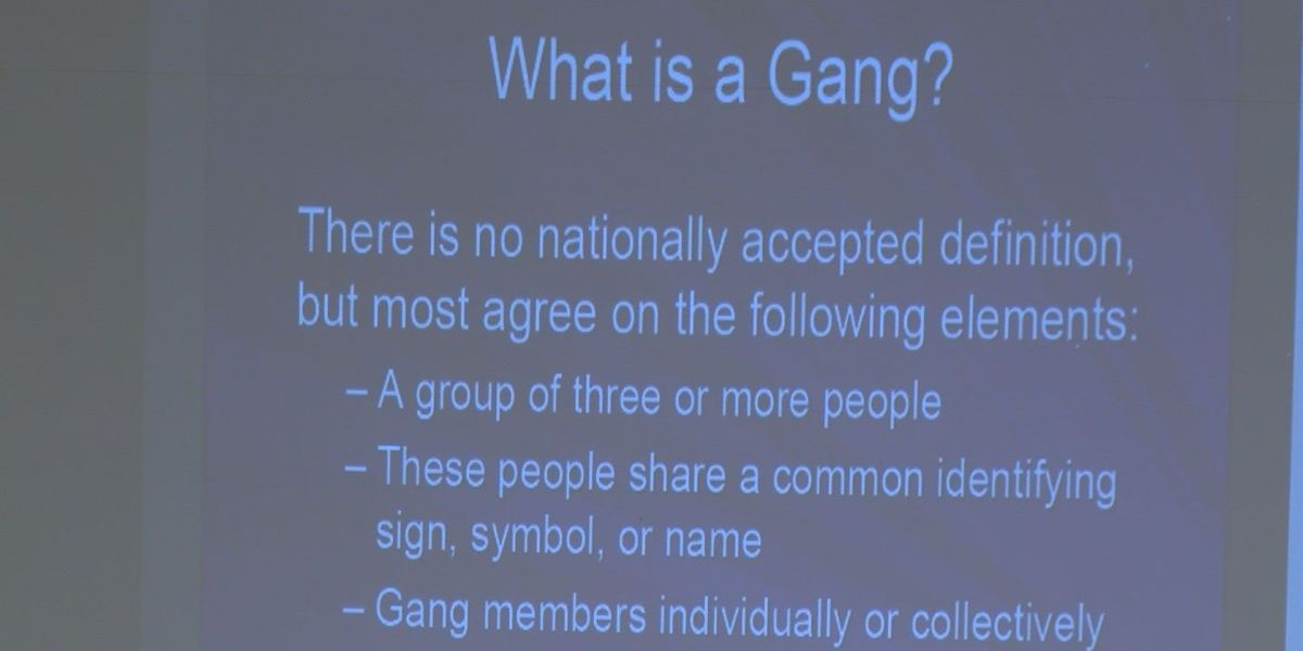Authorities take proactive stance in fighting gangs in area schools