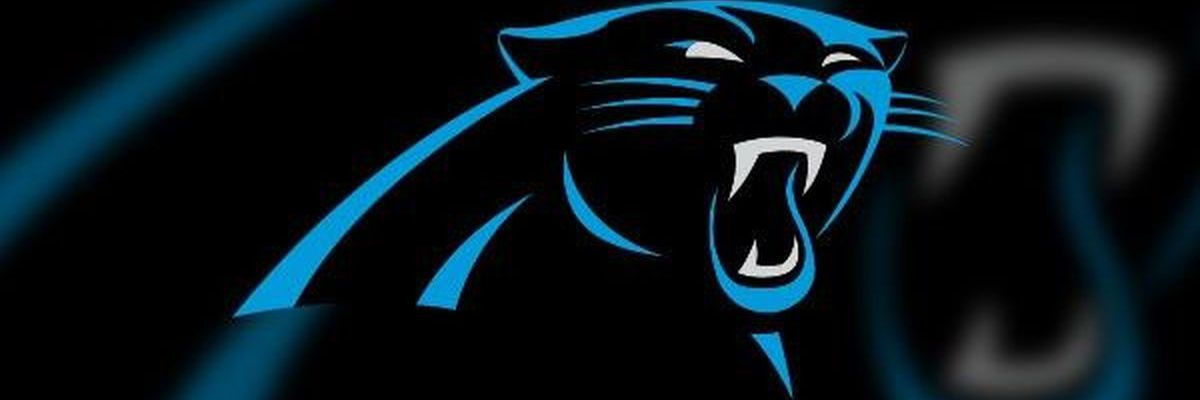 Panthers launch voter engagement initiative