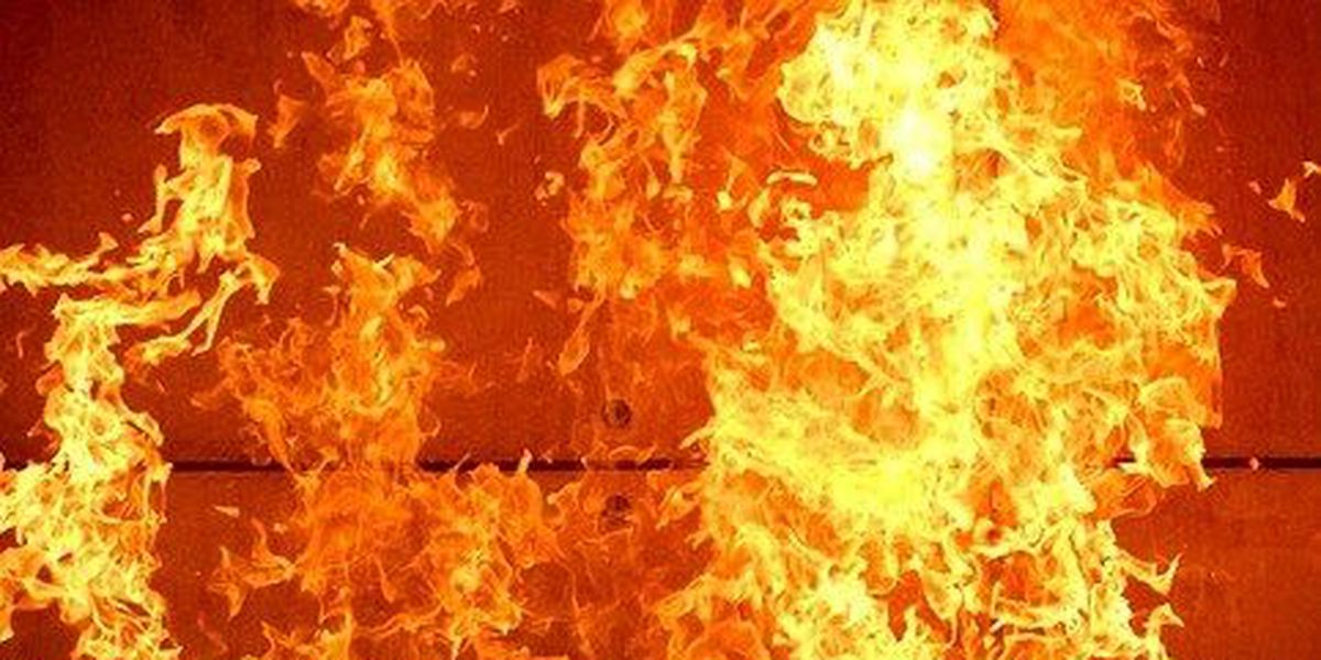 Woman, 78, dies in Dillon County house fire; foul play not suspected
