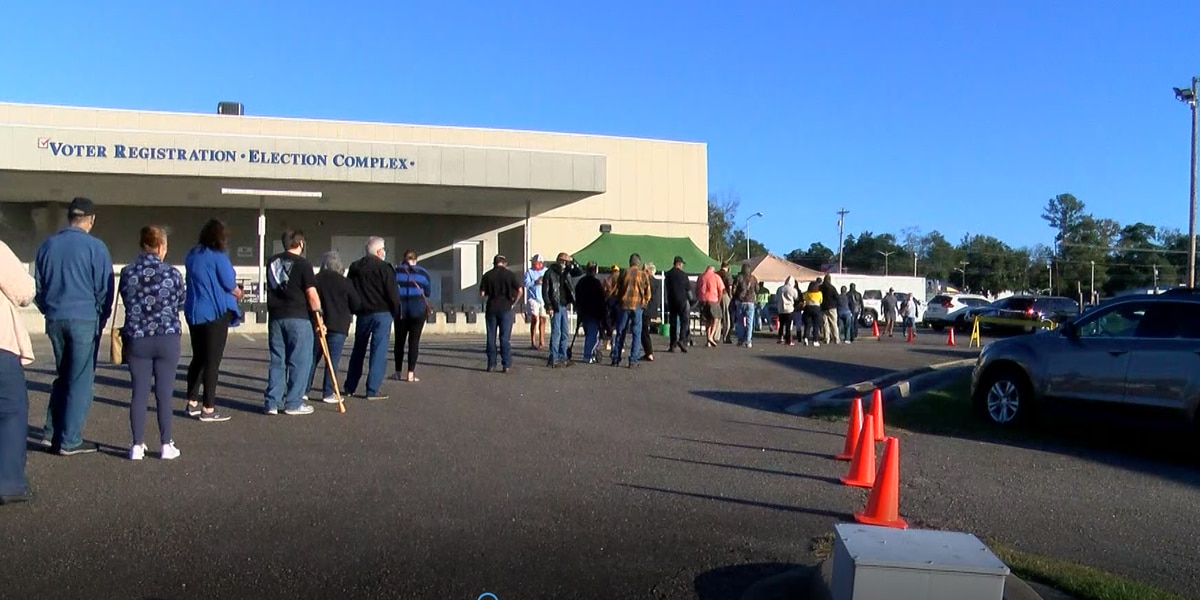 State election commission supports early voting for future elections