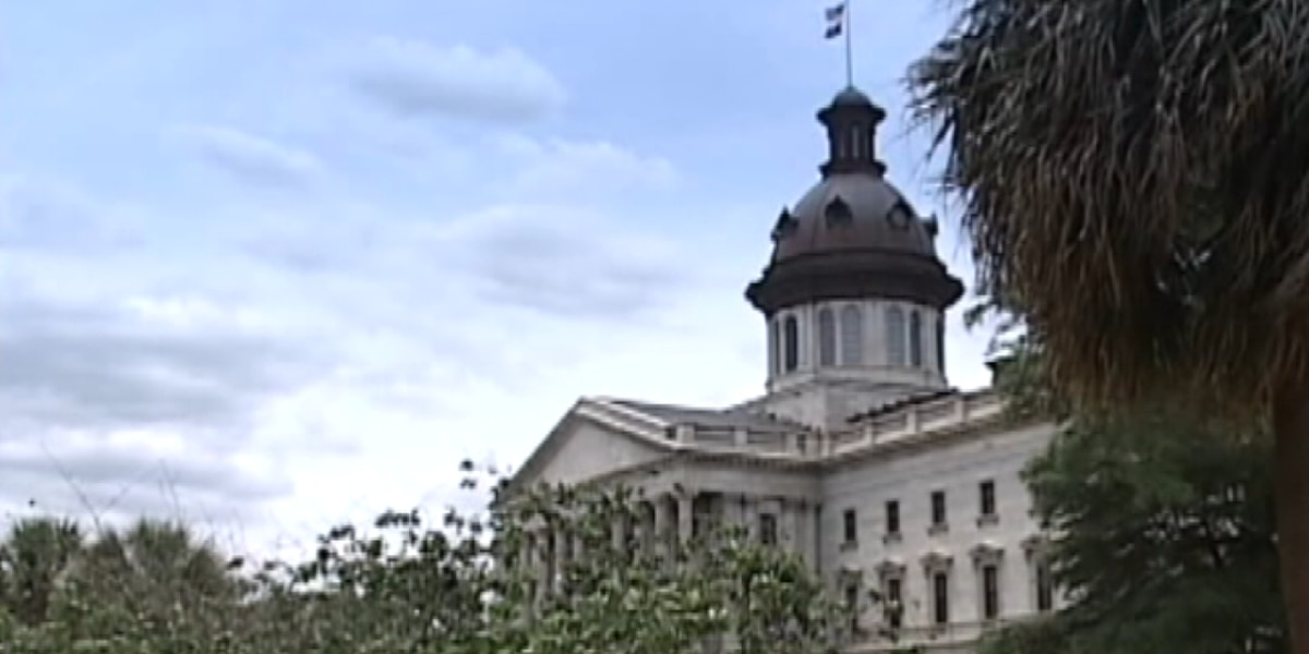 "SC Lawmakers working to abolish ""Citizen's Arrest"" law"