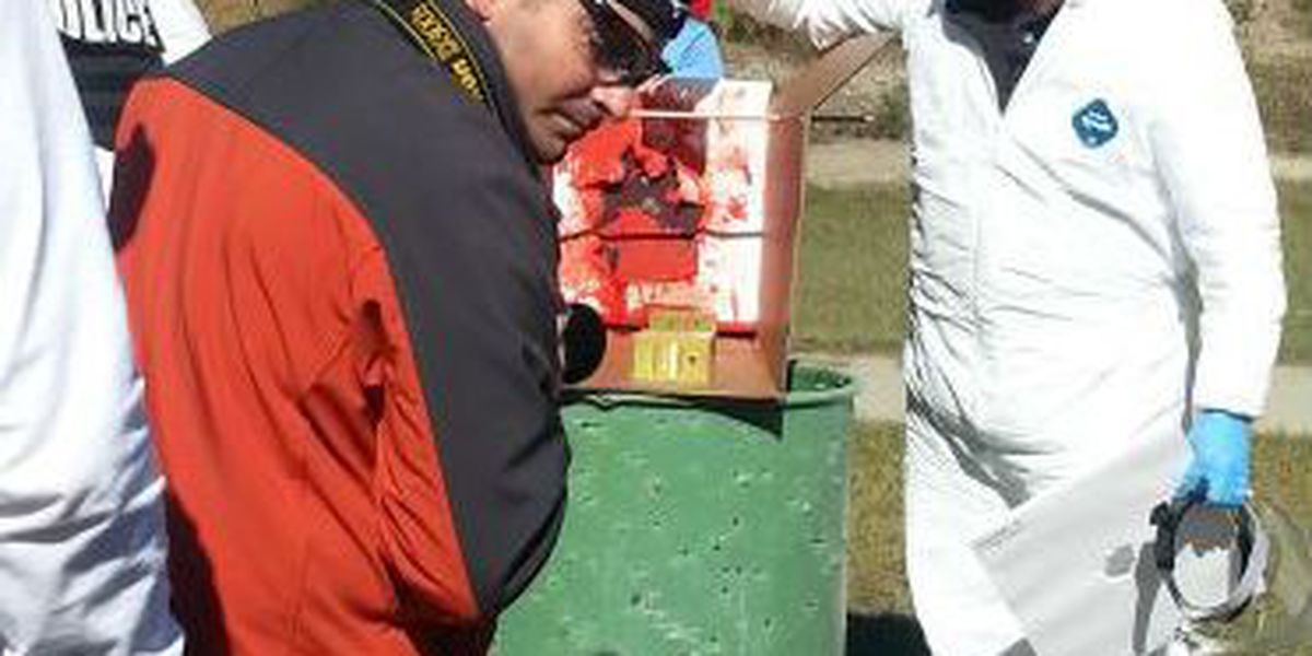 Blood patterns & Bullet holes: students take CSI class to next level