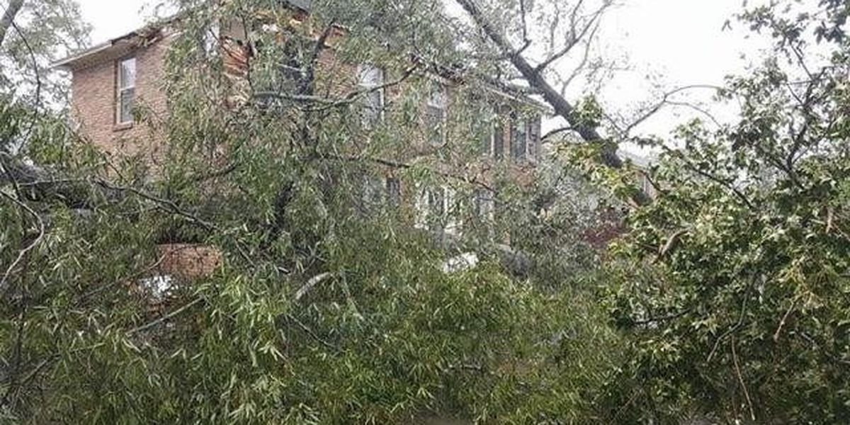 Florence County now estimates $52M in damage from Matthew