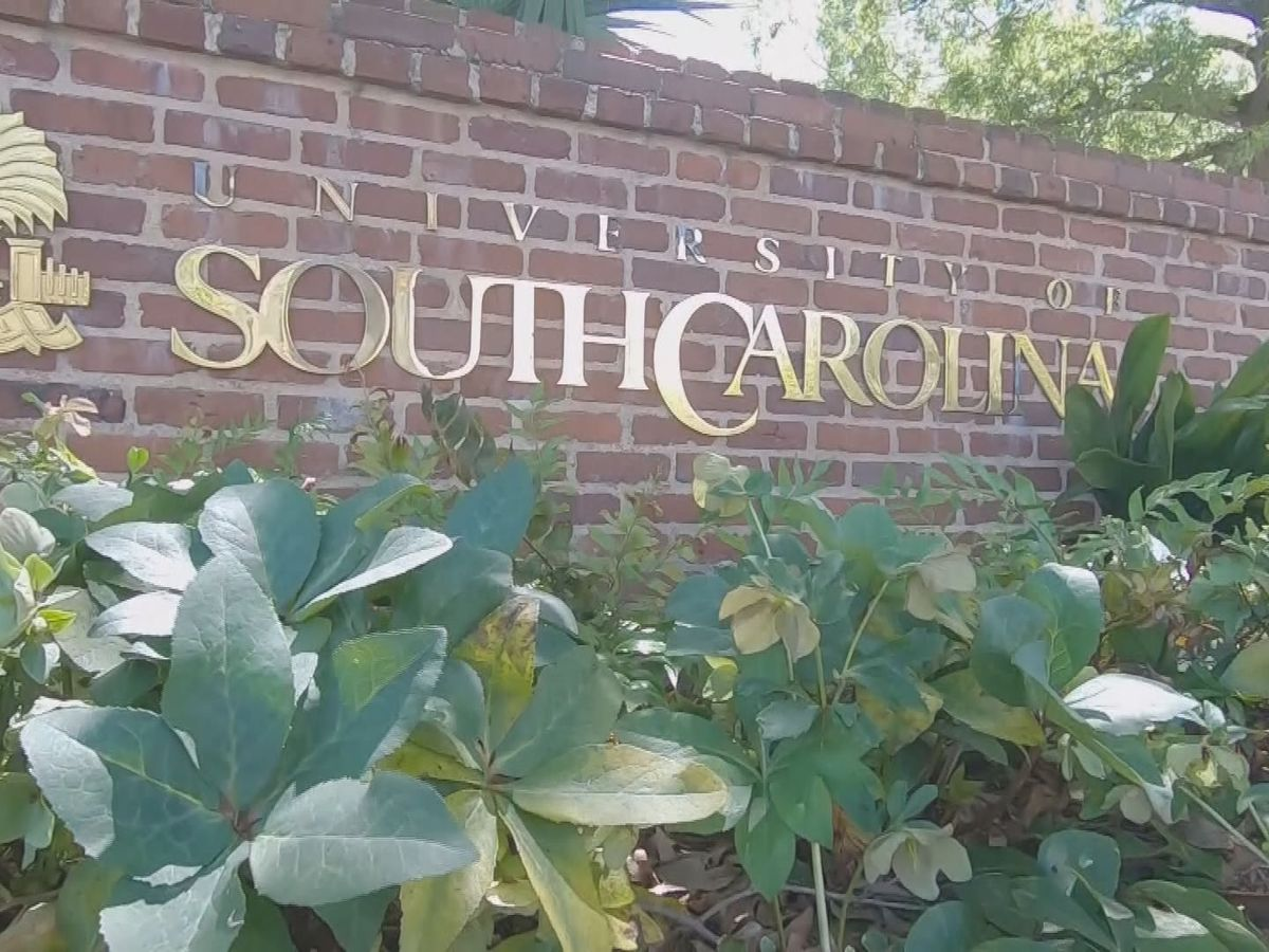 UofSC to require face masks in classrooms, library as part of phased campus reopening plan