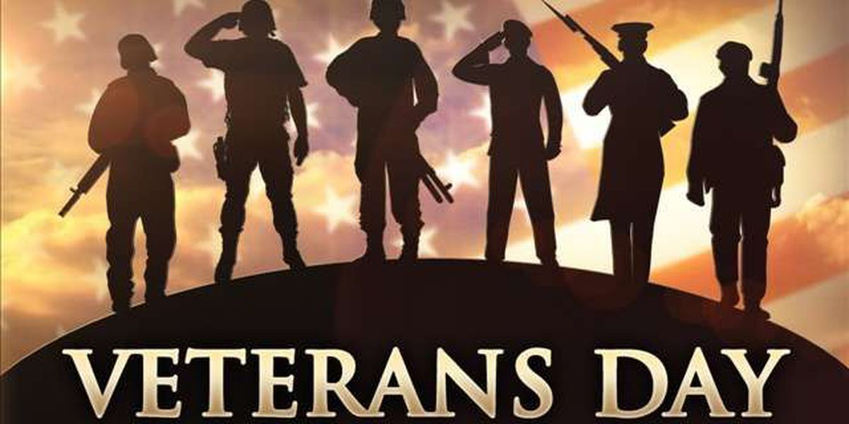 Veterans Day Events 2014