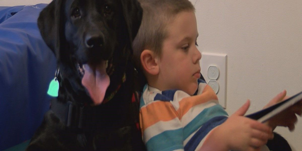Autism assistance dog changes Horry County boy's life