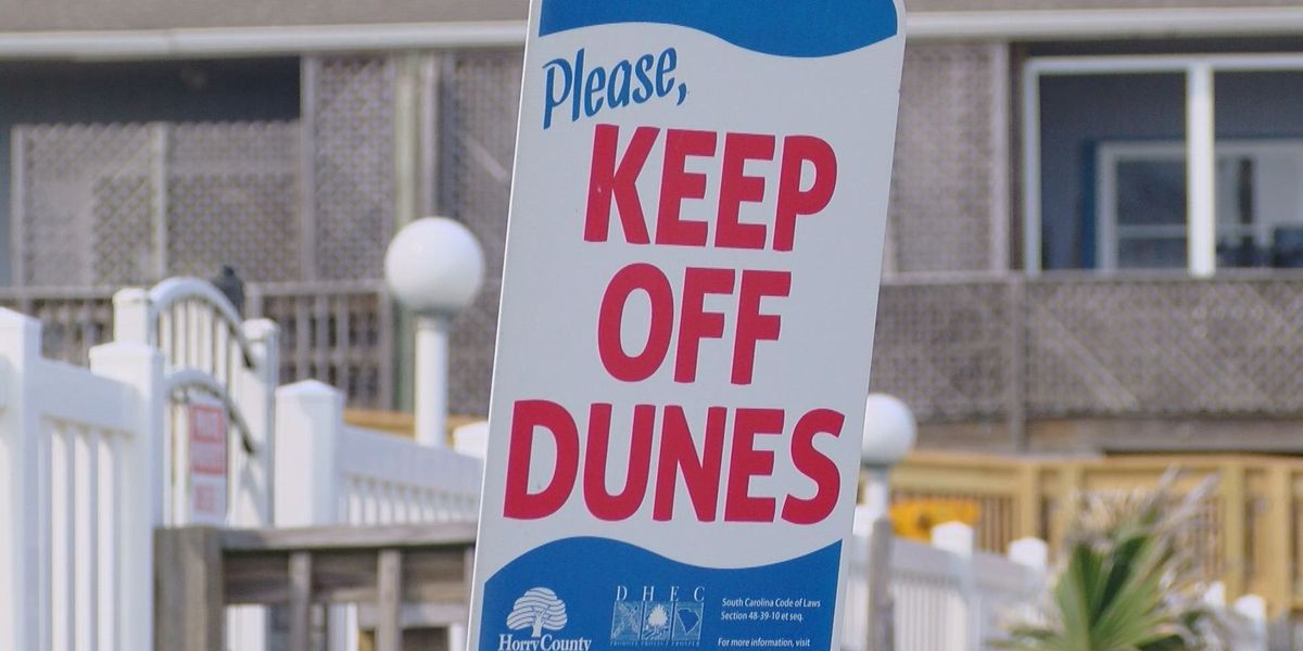 New ordinance could further enforce sand dune protection more strictly