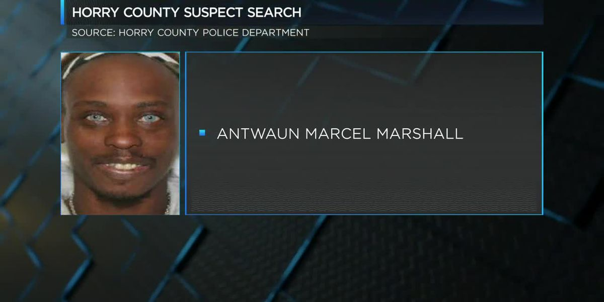 Suspect Search - July 18, 2019