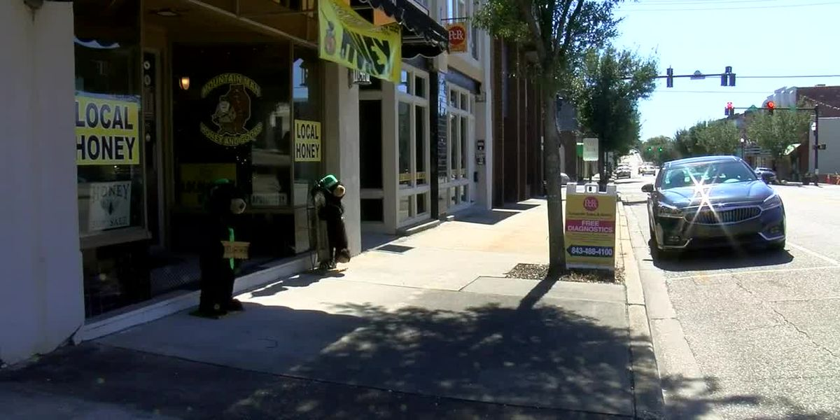 Group looks to bring more street performers to downtown Conway