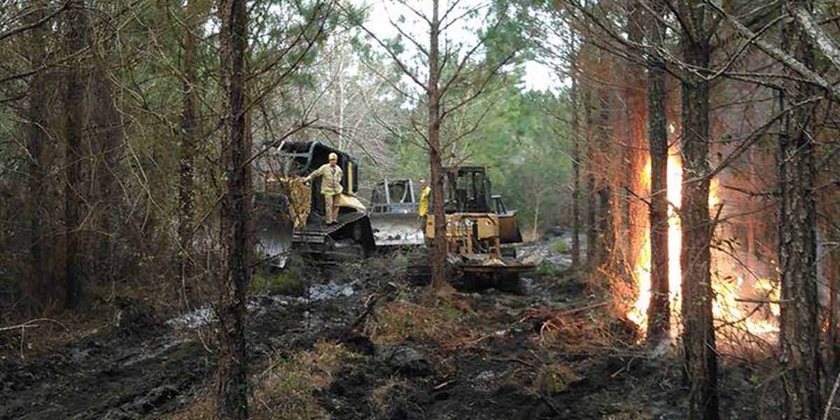 Crews extinguish woods fire in the Pee Dee