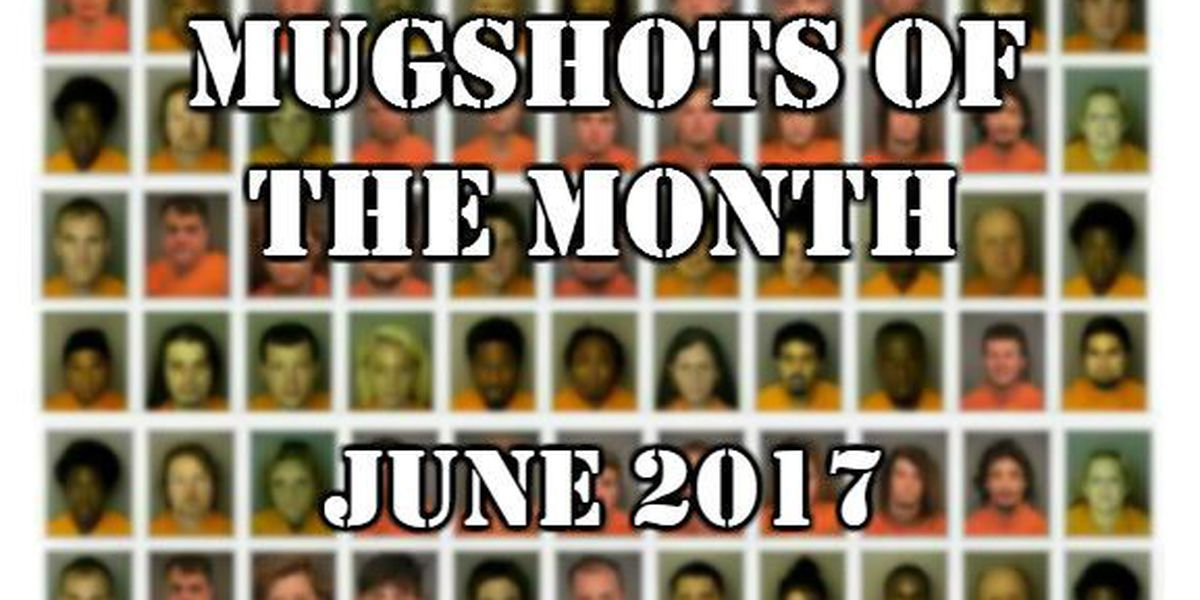 Mugshots of the Month - June 2017