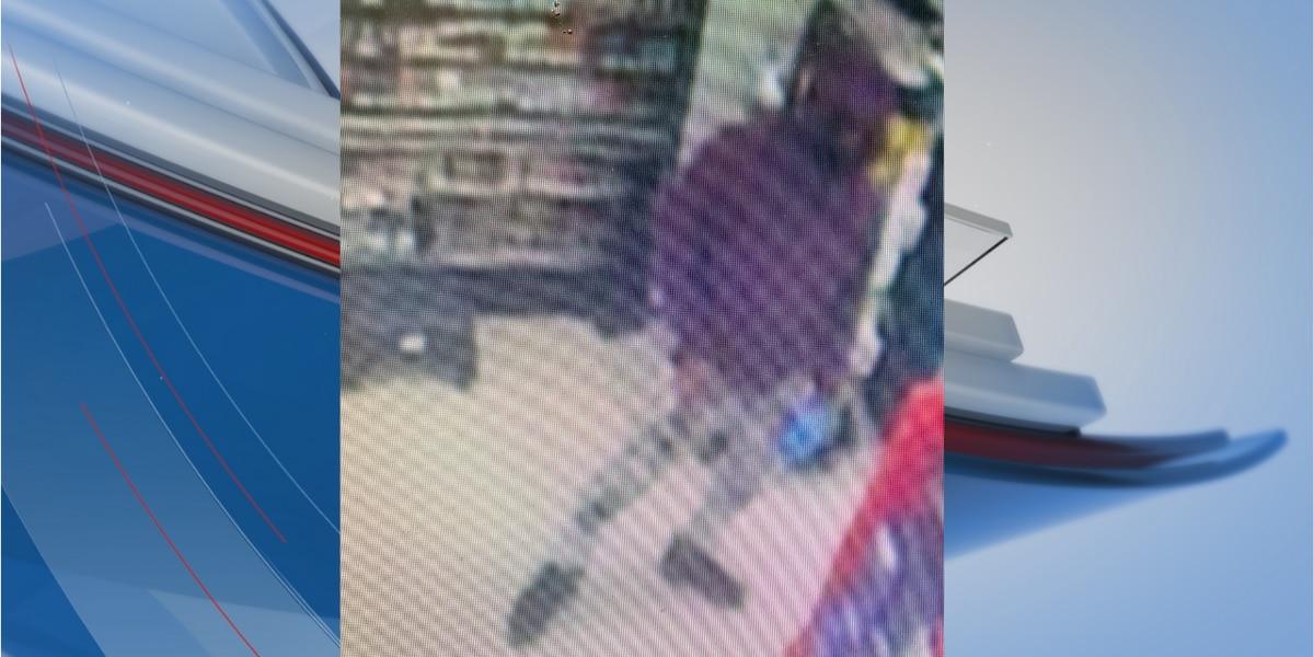 Man wearing surgical mask robs Dollar General in Effingham area, deputies say