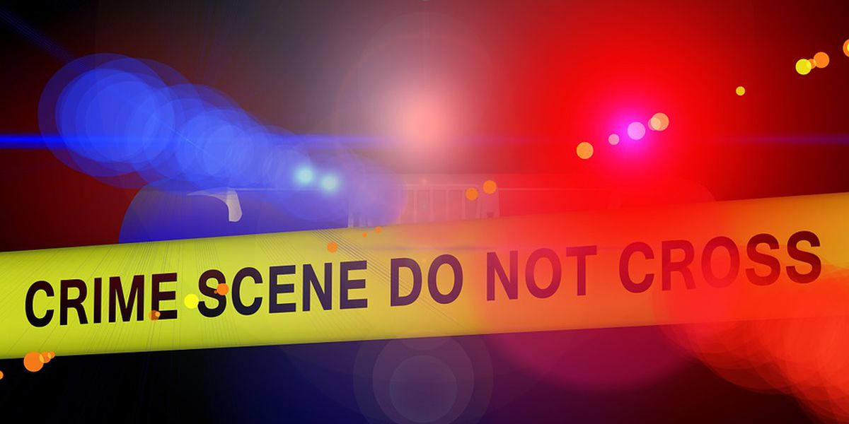 DCSO: No foul play suspected after man finds human remains in garage