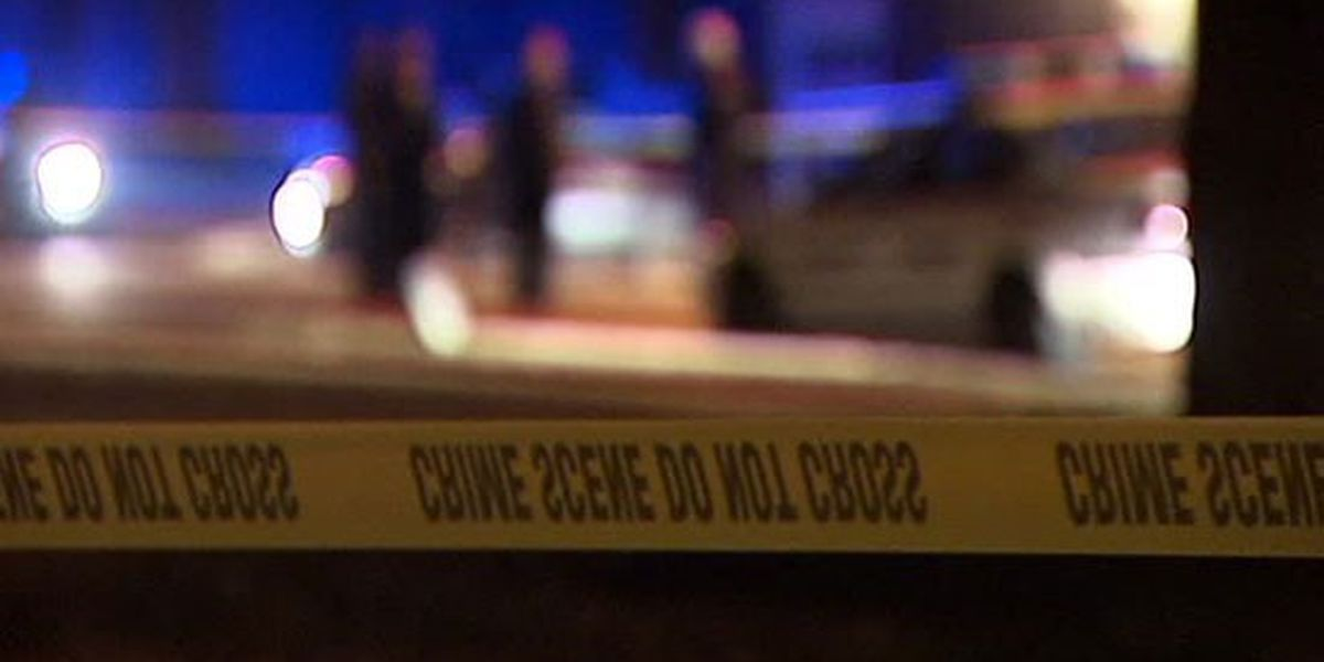 4-year-old killed in accidental shooting in North Charleston