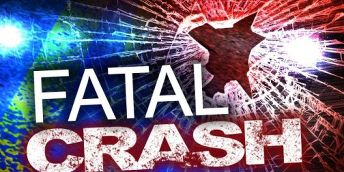One killed, two injured in wrong-way crash on Highway 378