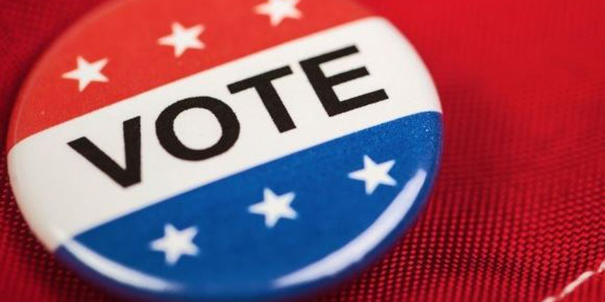 Horry County Election officials weigh in on issues during voting