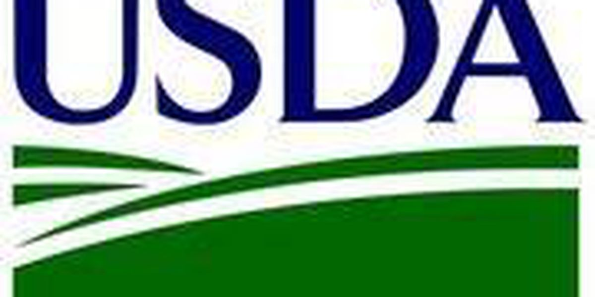 USDA to provide $10M to improve infrastructure in rural SC