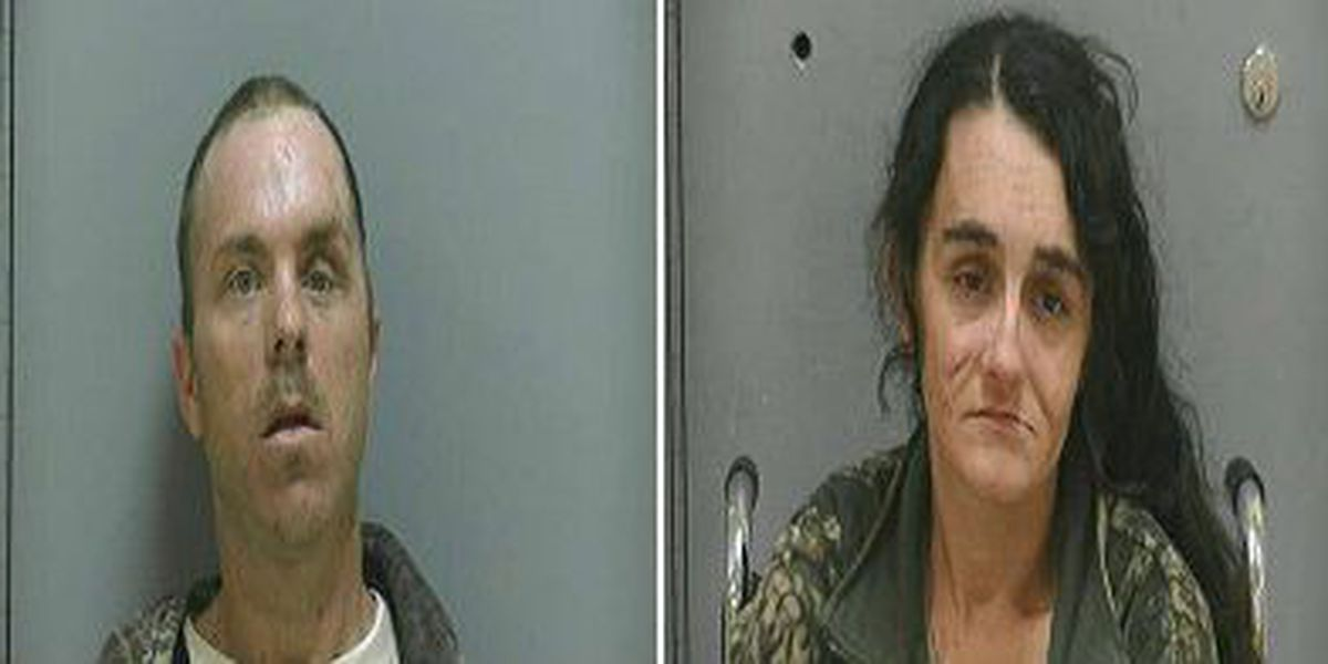 Darlington County deputies arrest two trying to steal four-wheeler, other yard items