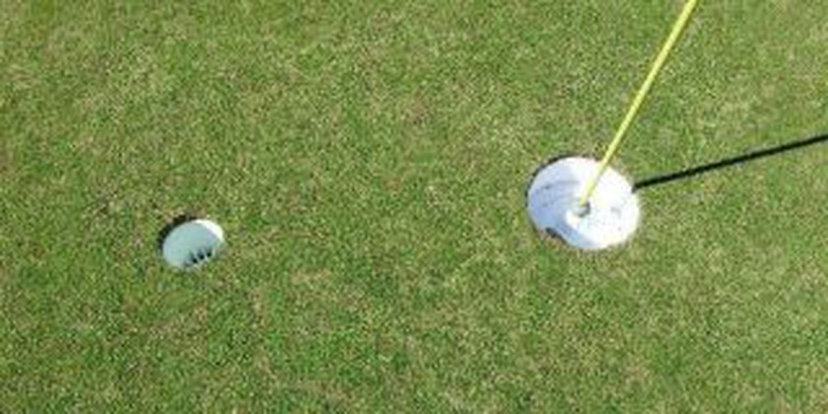 Courses searching for ways to bring in new golfers