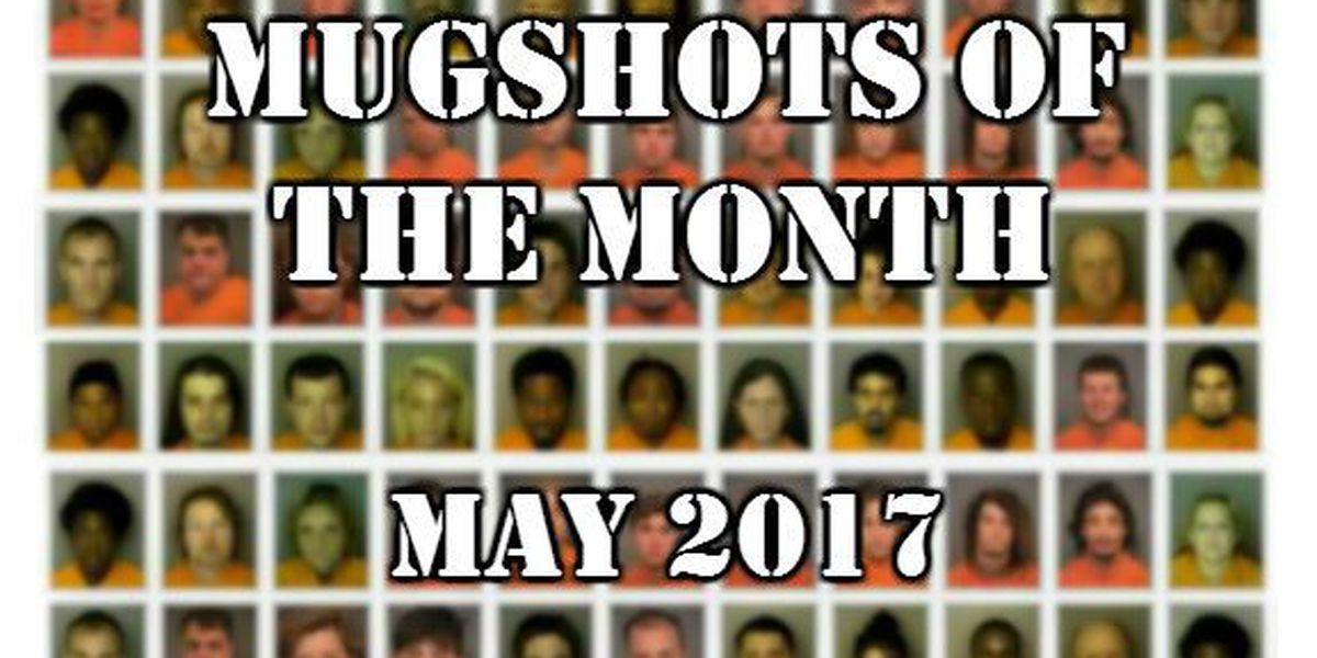 Mugshots of the Month - May 2017