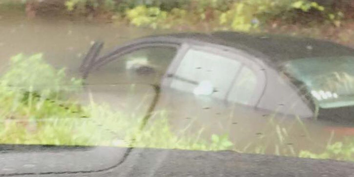 Portion of Holmestown Road closed due to flooding