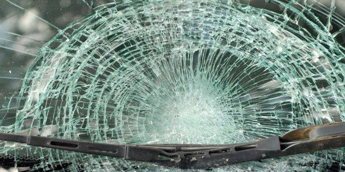 SCHP: Longs man gets hit and killed on Highway 9