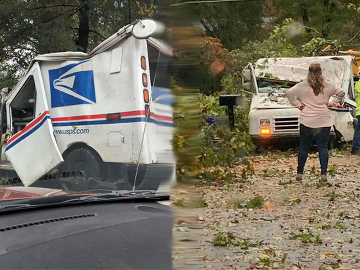 Mail carrier OK after tree falls on truck during Thursday deliveries