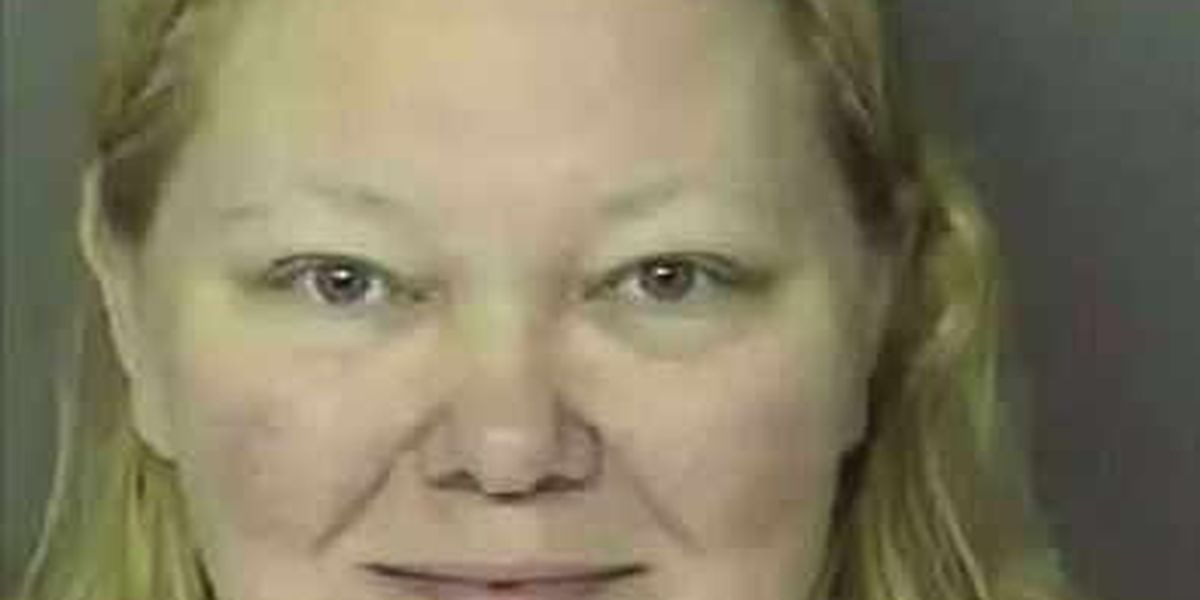 Tammy Moorer posted information about Heather Elvis case to Facebook, court documents allege