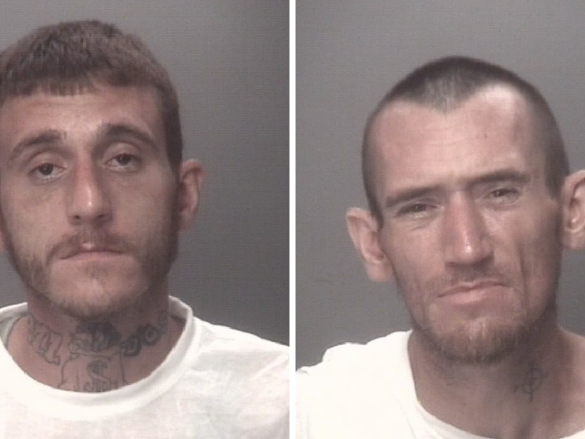 Deputies arrest, charge brothers in connection to convenience store break-ins