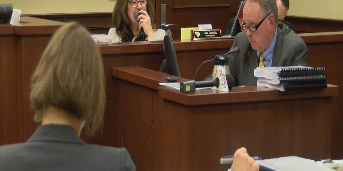 Four witnesses testify for day two of International Drive hearing