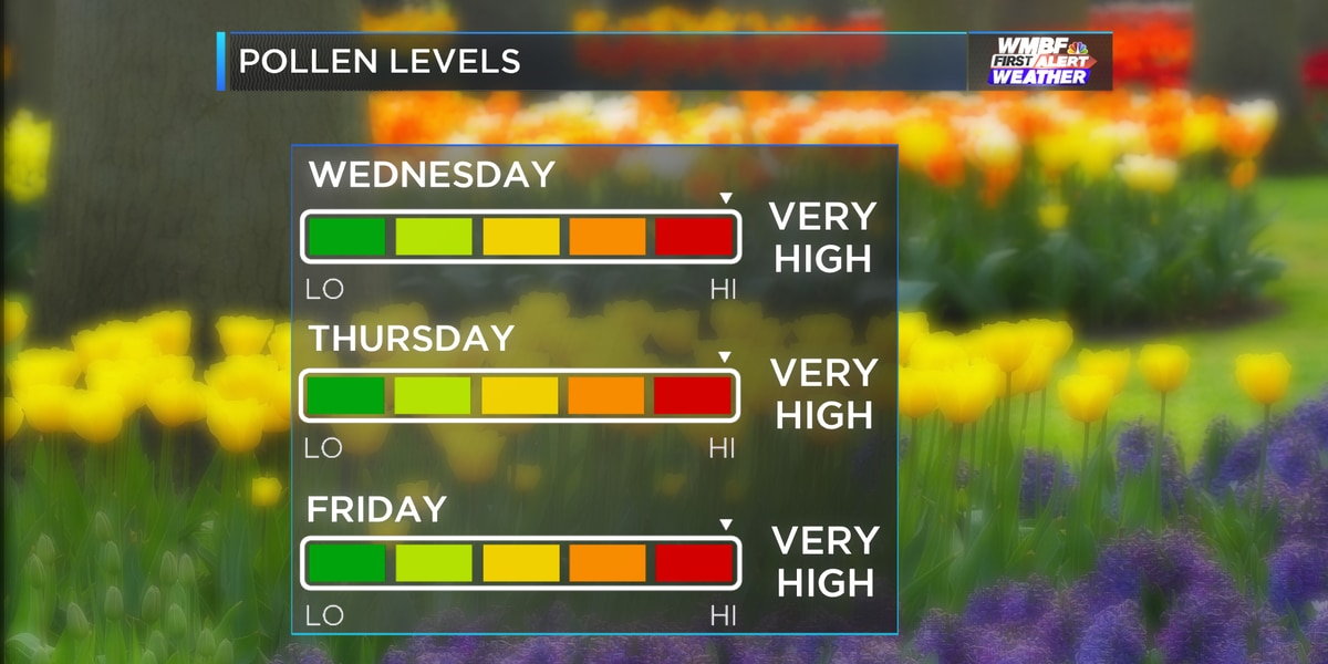 Warmer weather, pollen continue to move in