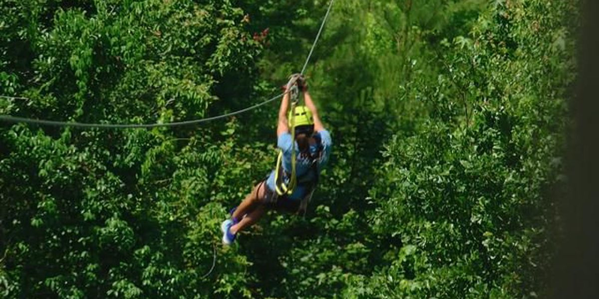 On the Road: Shallotte River Swamp Park takes ziplining to new heights