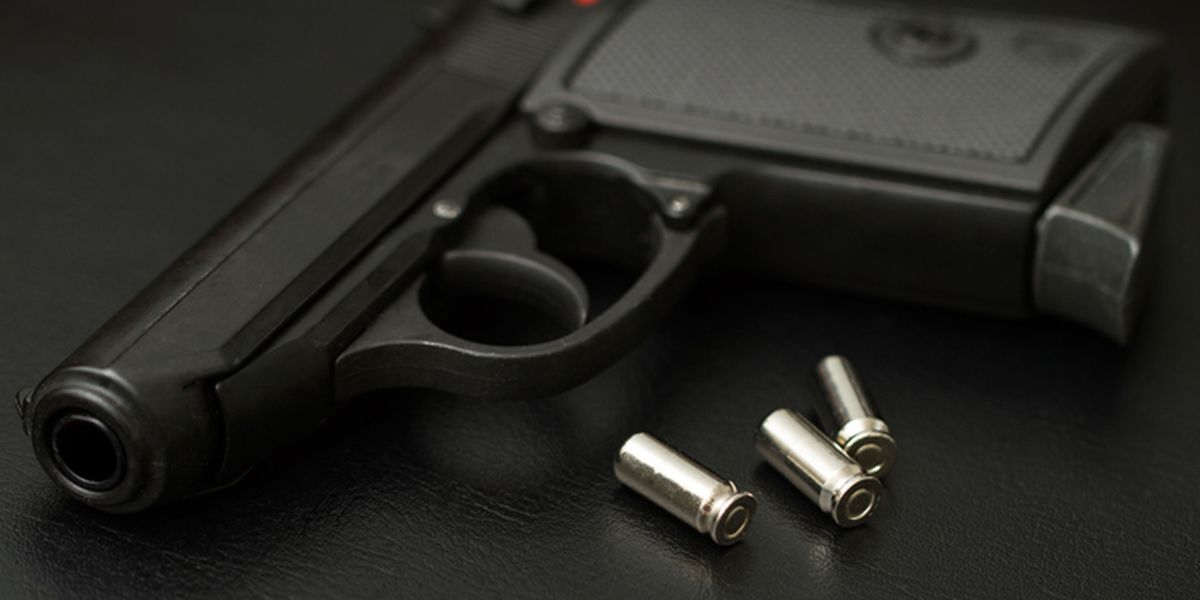 New firearms ordinance sparks debate between Horry County leaders