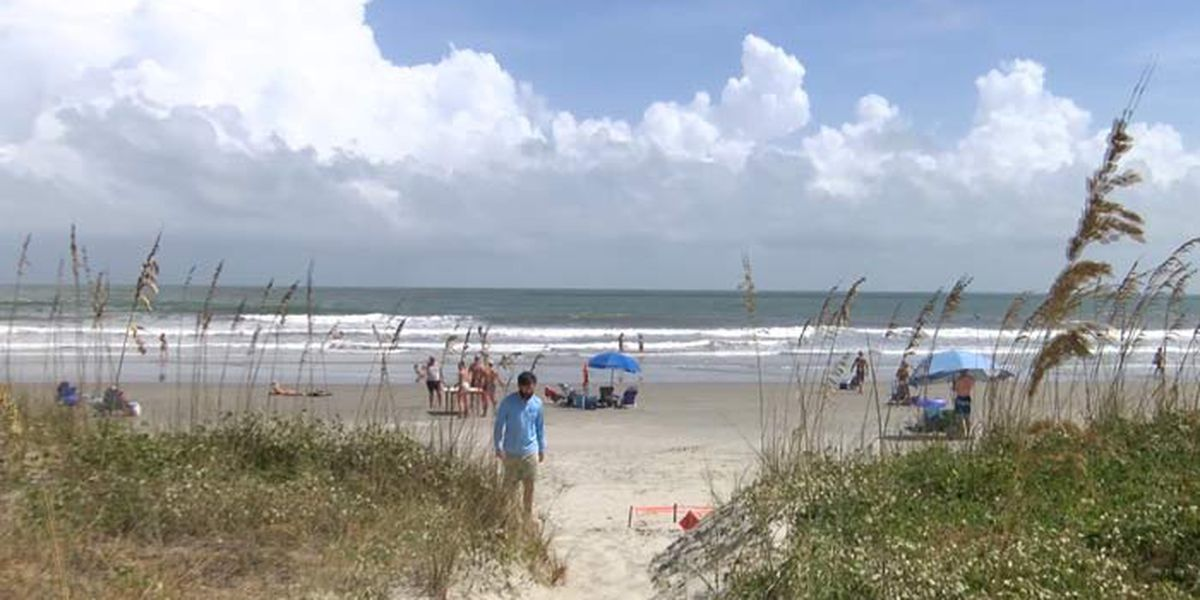 Hotel bookings, short-term rentals, and future reservations all up along the SC coast