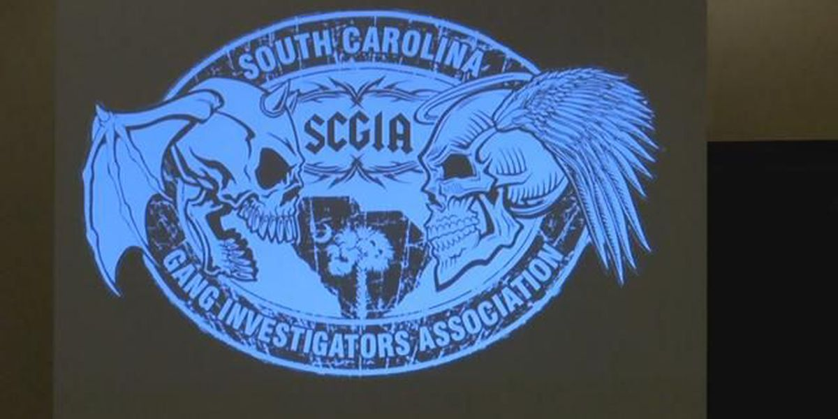 'It's a fertile ground for it:' Law enforcement discusses plans to combat gangs in Horry County
