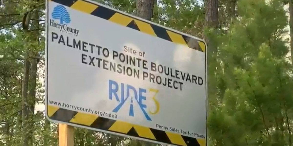 Palmetto Pointe Blvd. extension set to be complete in November