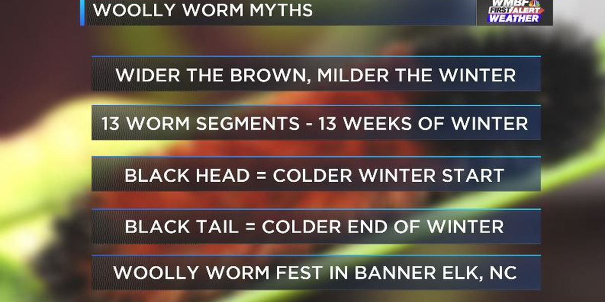 Facts and Myths of Carolina's Animal Forecaster: The Woolly Worm