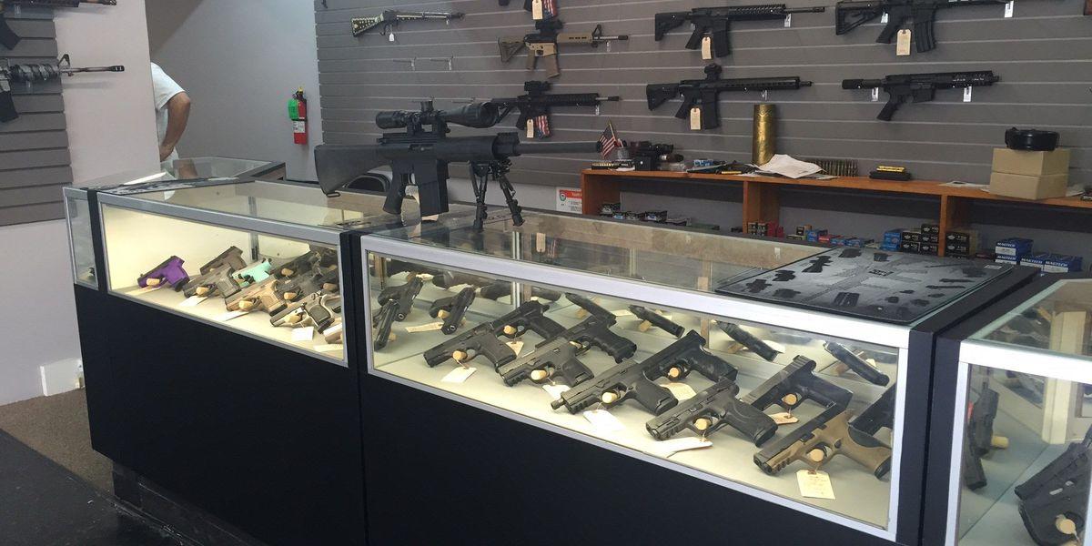 Suspect attempts to burglarize Elite Firearms in Carolina Forest area