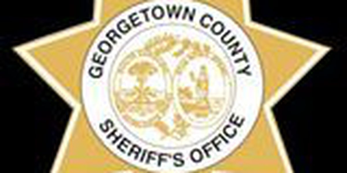 Woman files lawsuit against Georgetown County Sheriff's Office after 2015 traffic stop
