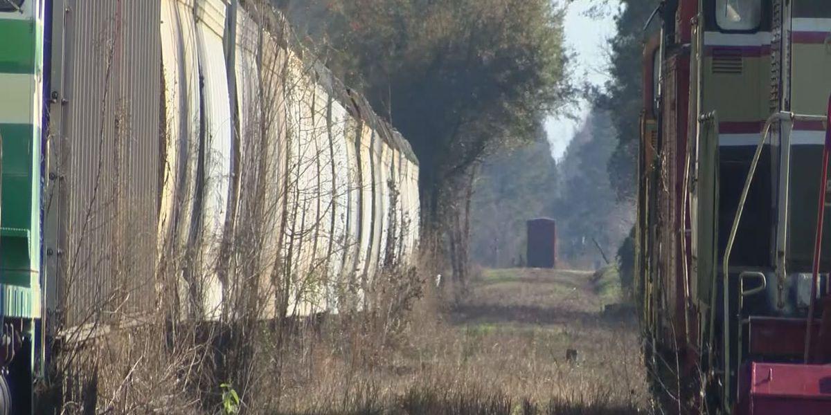 RJ Corman repairing damage to Carolina Southern Railroad once again