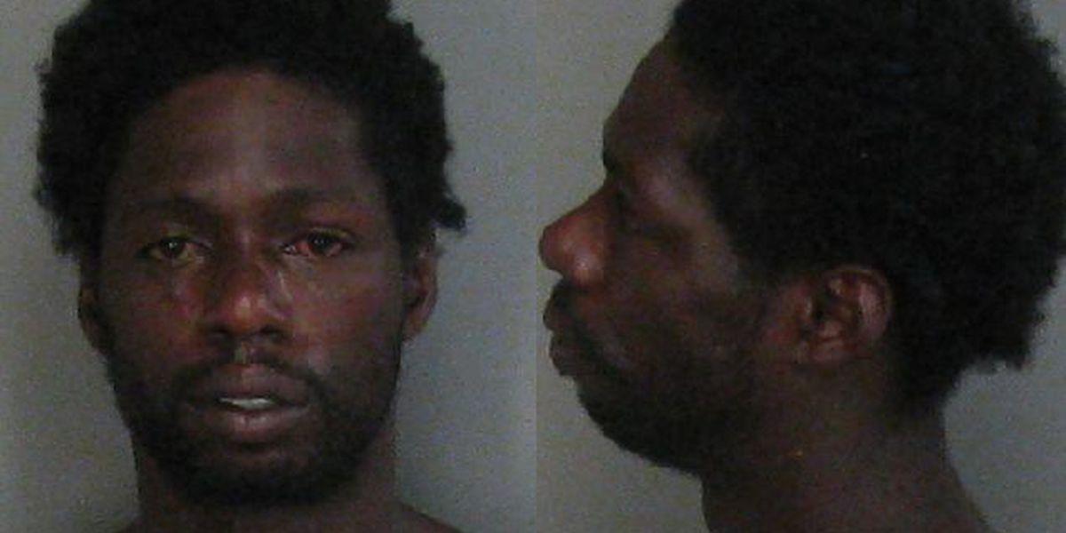 Man arrested after allegedly killing kitten