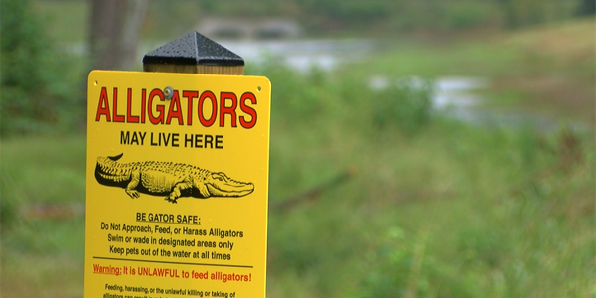 Alligator signs installed in Linear Park