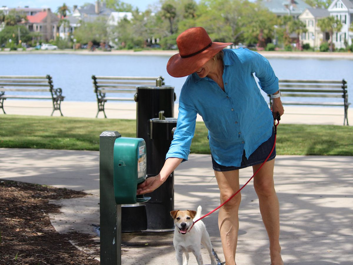 City of Charleston providing free sunblock through dispensers found throughout the city