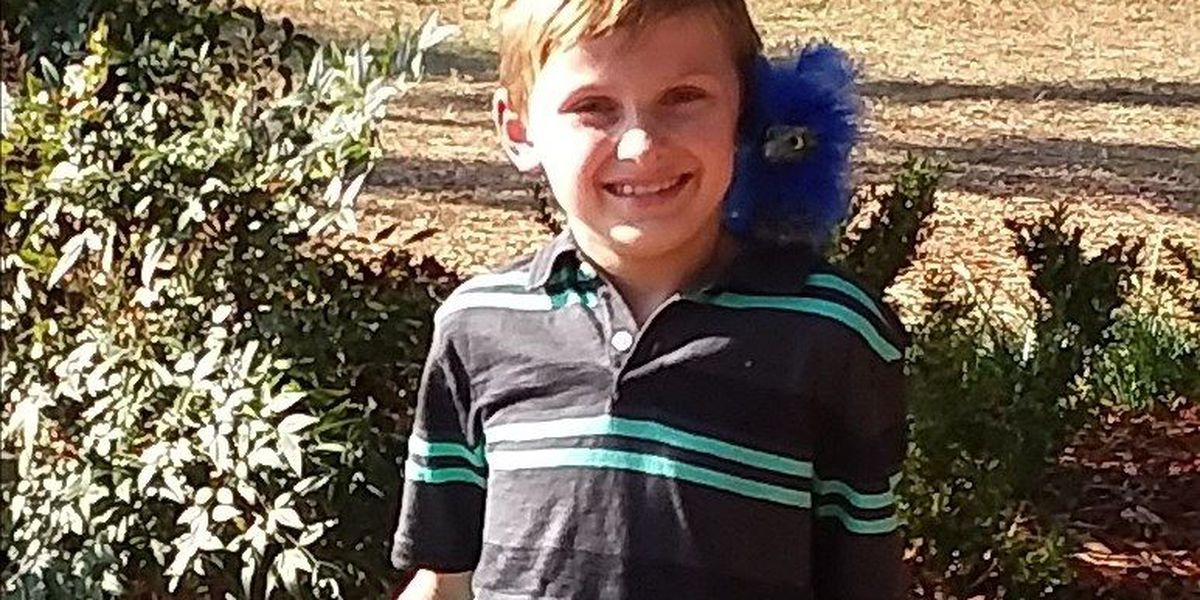 Mother says missing NC boy may be with grandparents in Surfside Beach area