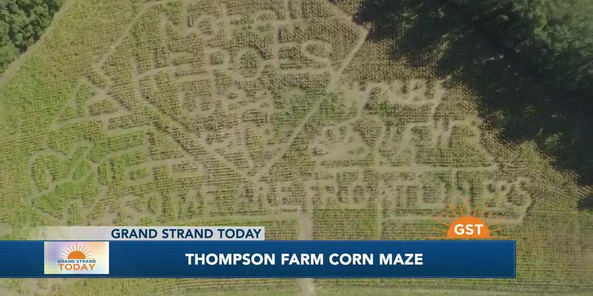 Thompson Farm Corn Maze has a design every year
