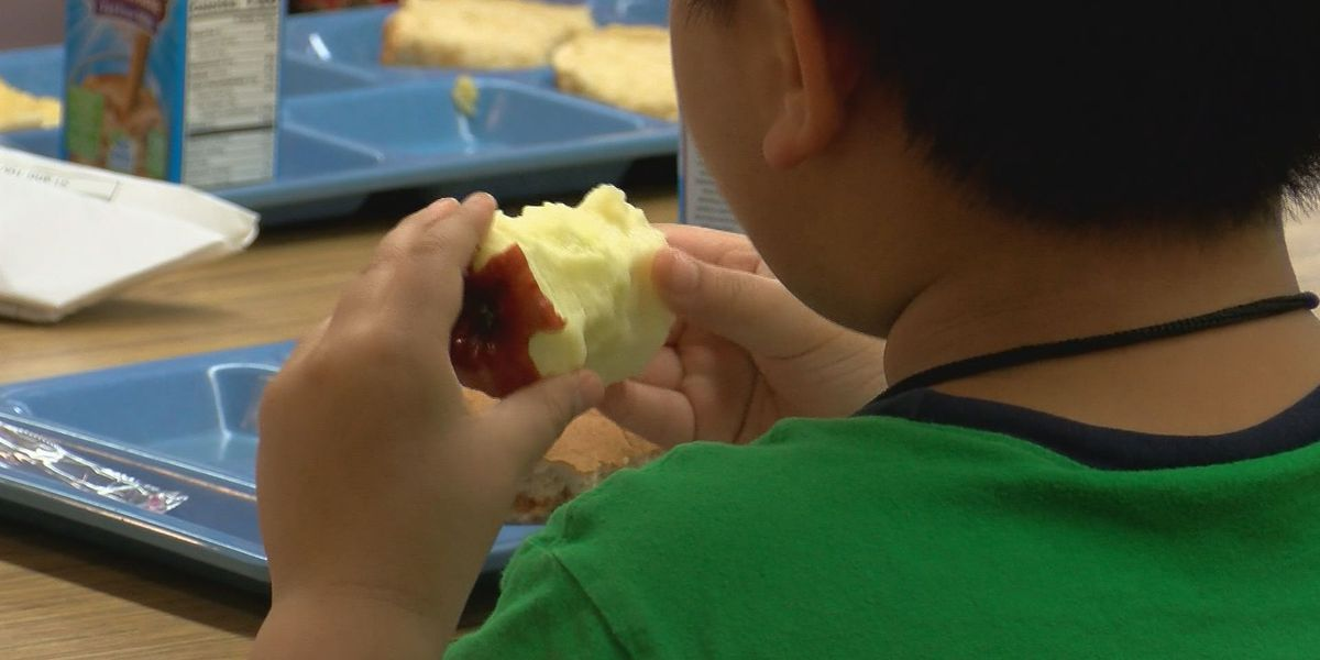 Marion County leaders aim to combat childhood obesity with new program
