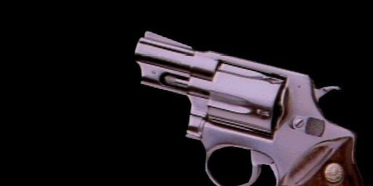 6-year-old student brings loaded gun to Timmonsville elementary school